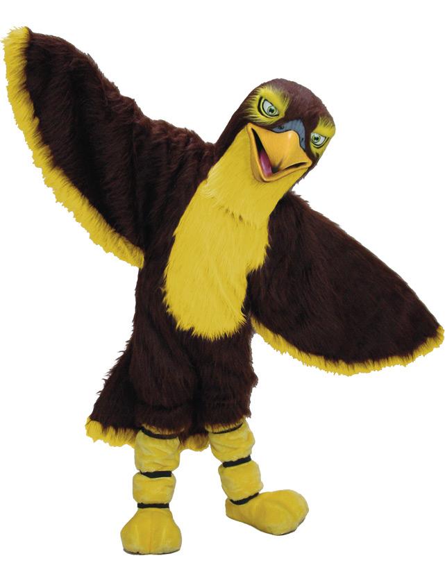 Falcon Mascot Uniform