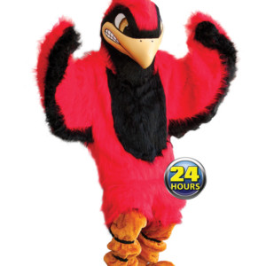 Cardinal Mascot Uniform