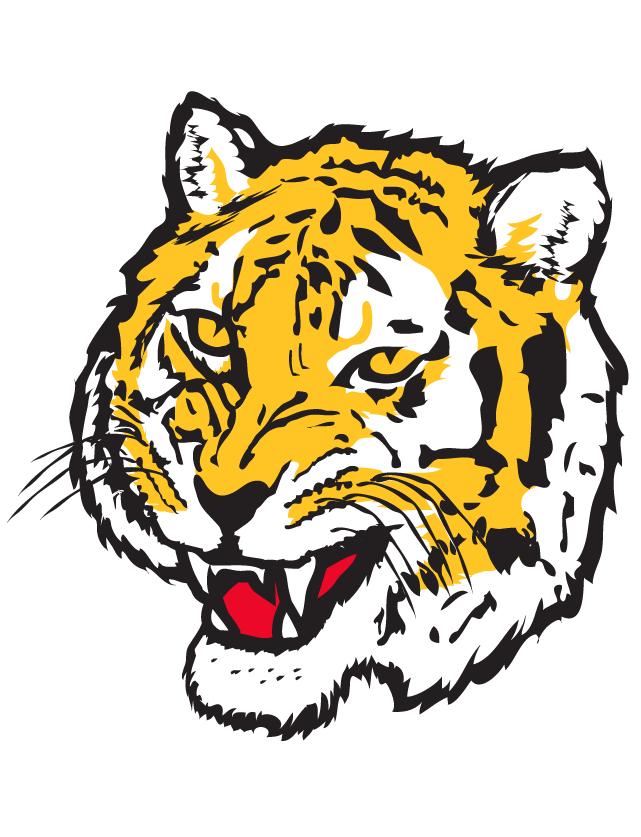 Tiger Head Temporary Tattoos