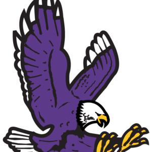 Purple Hawk Temporary Tattoos