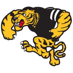 Gold Tiger Temporary Tattoos