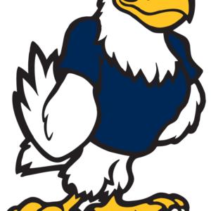 Navy Eagle Temporary Tattoos