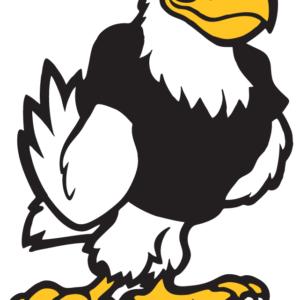 Black Eagle Temporary Tattoos