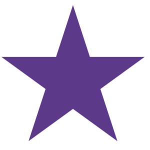 Purple Star Temporary Tattoos