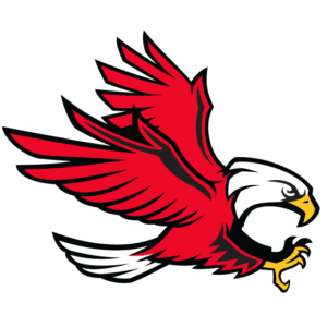 Red Eagle Temporary Tattoos