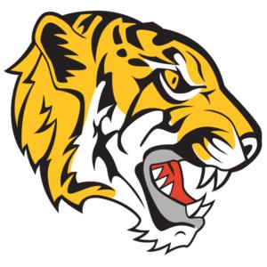 Gold Tiger Head Temporary Tattoo