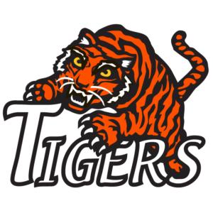 Orange Tigers Temporary Tattoos