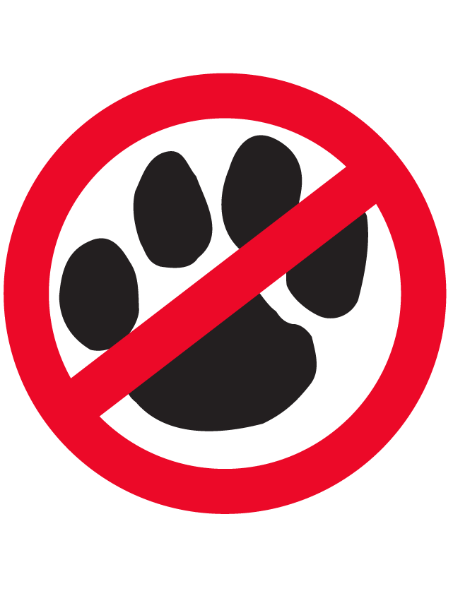 No Paw Print Temporary Tattoos