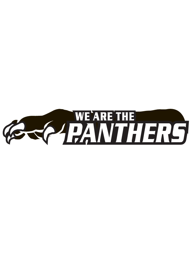 We Are The Panthers Spirit Strip Temporary Tattoos