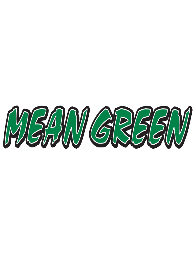 Mean Green Spirit Strip Temporary Tattoos