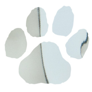 Silver Metallic Paw Print Temporary Tattoos