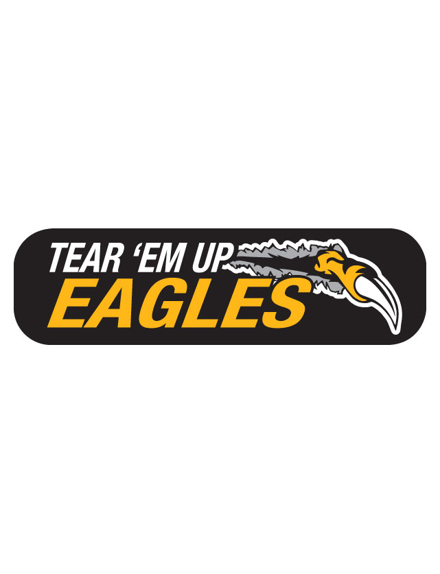 Tear 'Em Up Eagles Waterless Tattoos